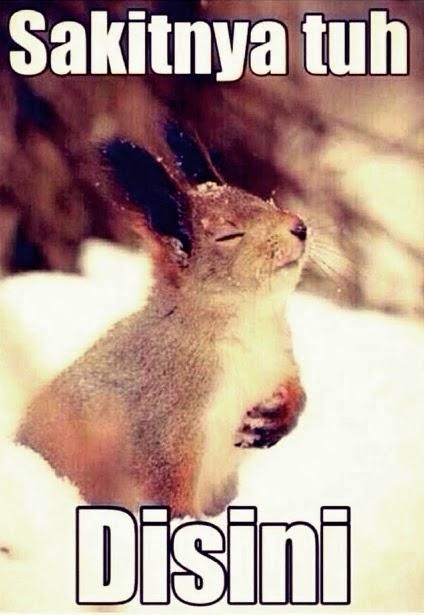 DP BBM Sayang Sakitnya Tuh disini Rabbit